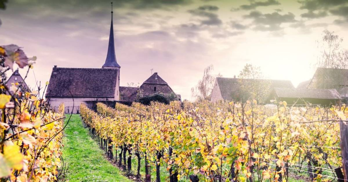 Vinruten I Alsace