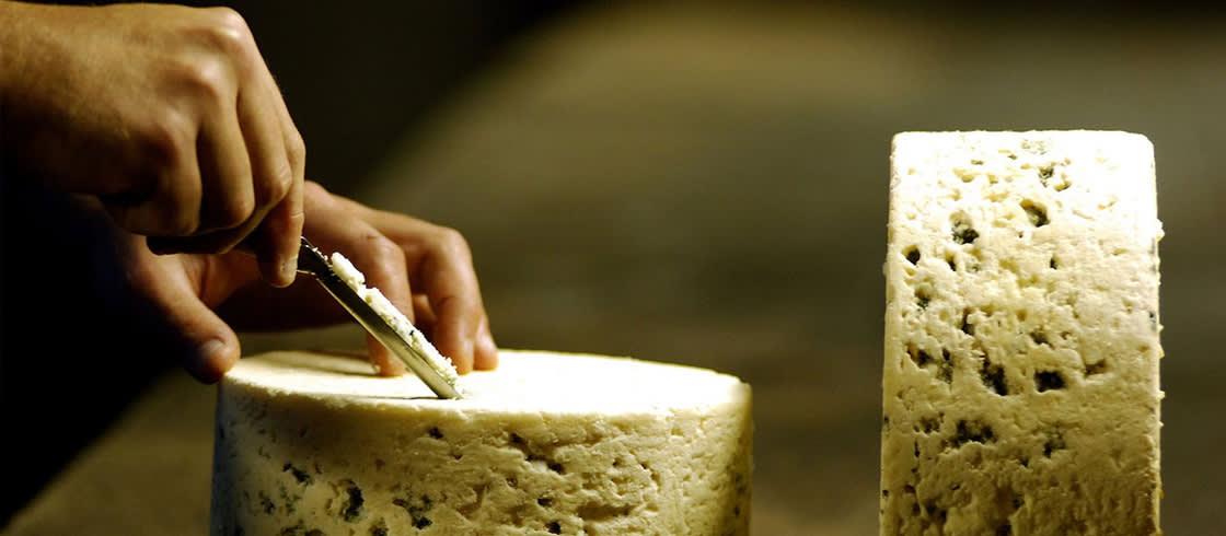 quesos-francia