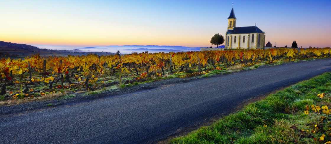 Iglesia, viñas y carretera de Saint-Laurent-d'Oingt.