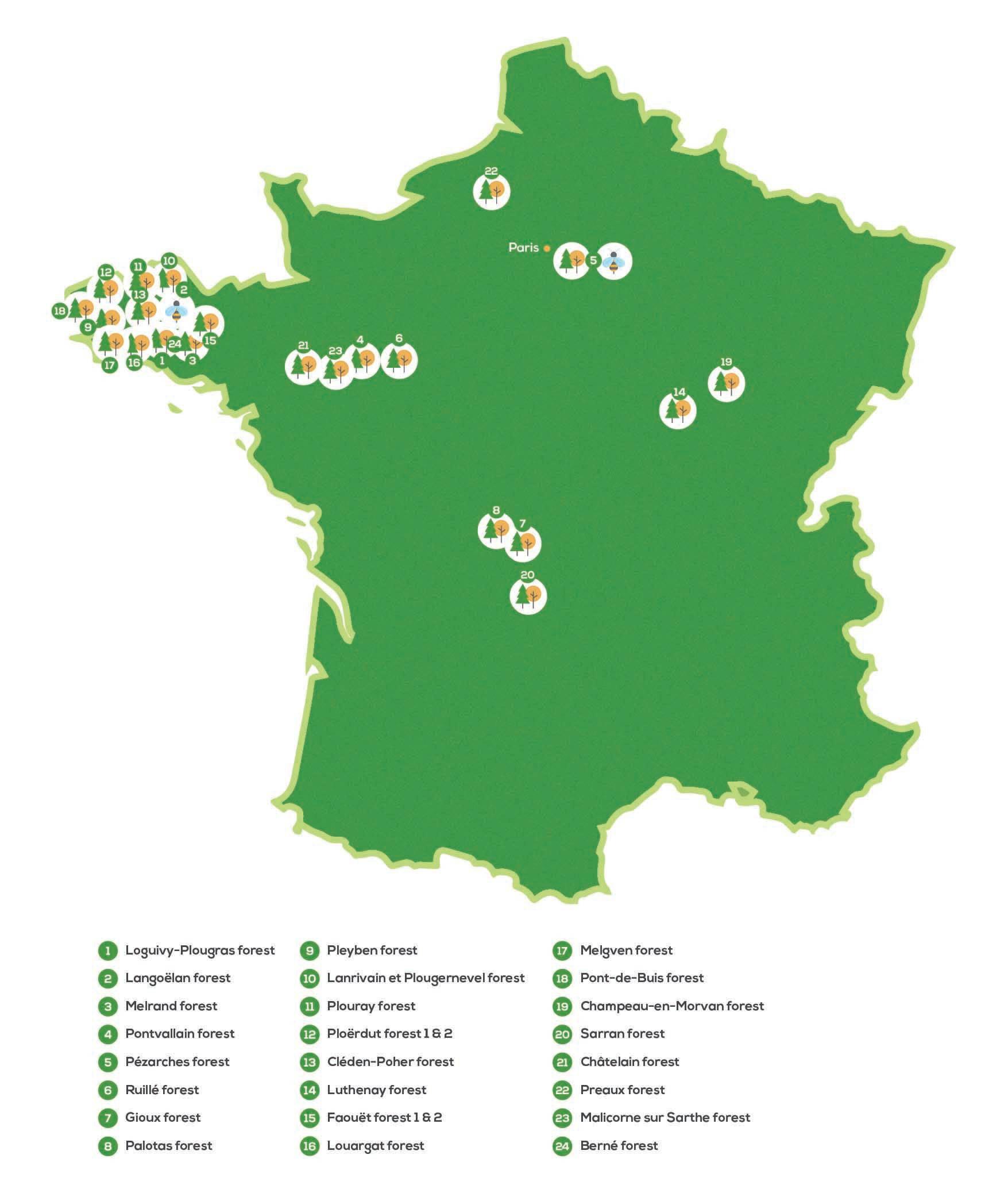 EcoTree har i dag 25 skove, som du kan besøge i Frankrig.