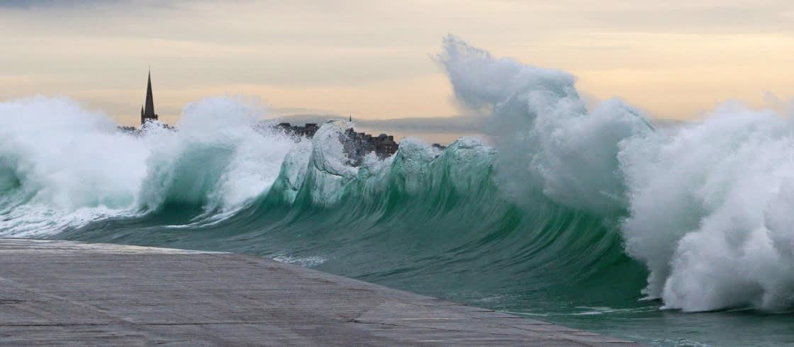 Image result for high tides