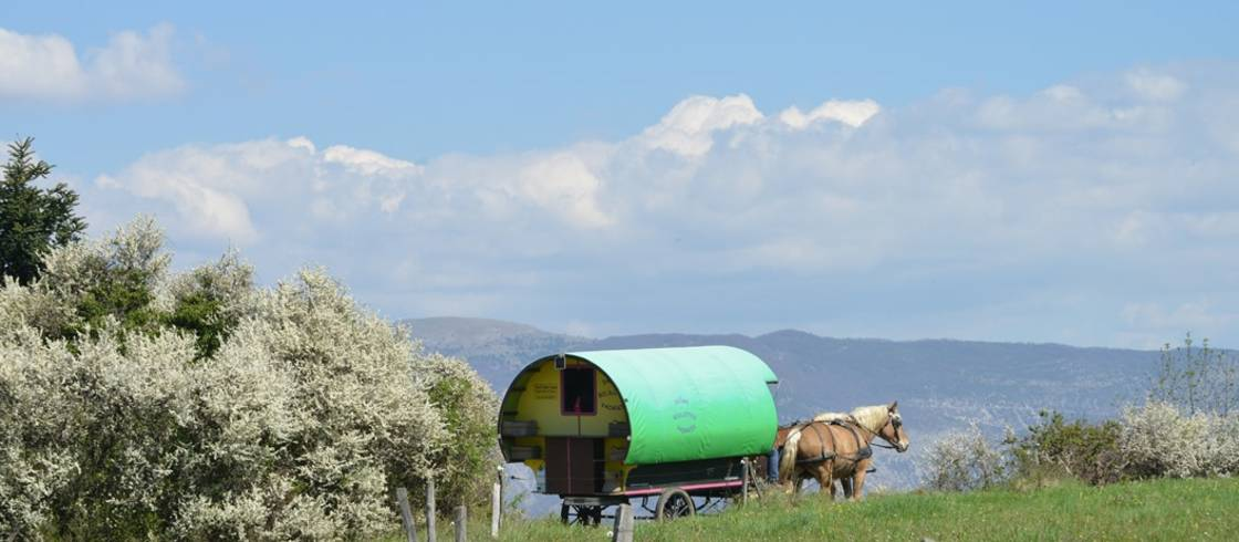 Het landschap glijdt heerlijk langzaam voorbij tijdens een huifkarvakantie in de Drôme.