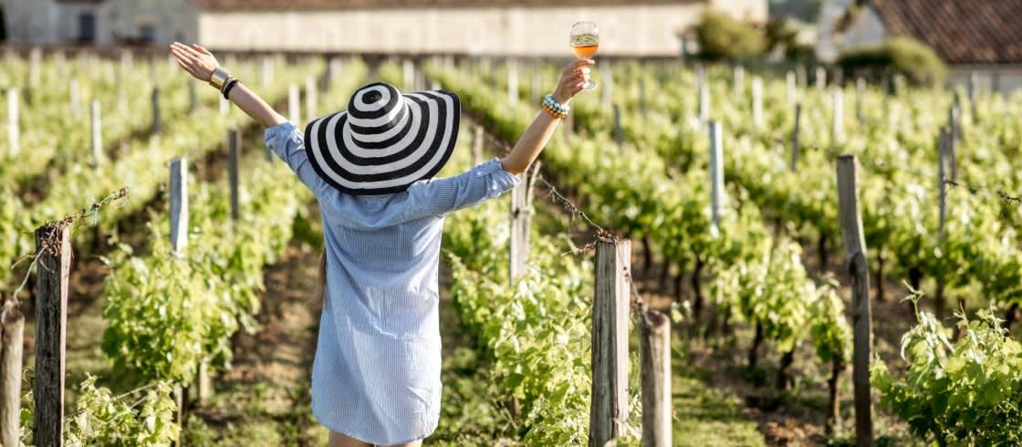 Défi blogueurs - France dans les vignes