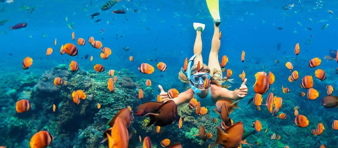 Guadeloupe-øerne byder på et utal af spændende vandsportsaktiviteter.