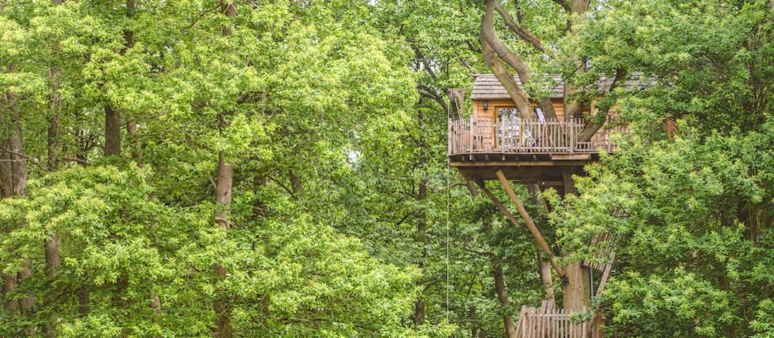 10 Magische Baumhäuser