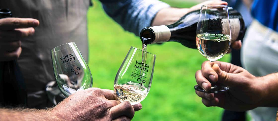 Verkostung beim Winzer in den Weingärten vor Nantes