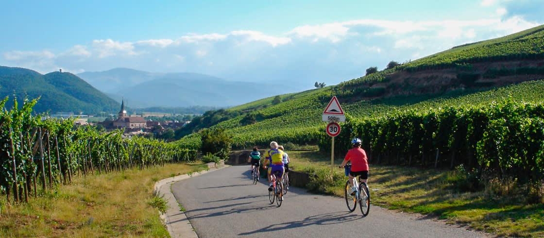 Recorriendo la Ruta de los Vinos de Alsacia en bicicleta.