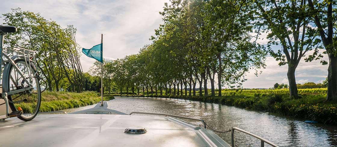 A lo largo del Canal du Midi, los plátanos se utilizaban en origen para estabilizar el terreno de las orillas