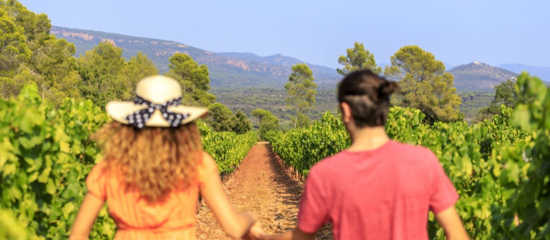 Whether real or virtual, treat yourself to a deserved stroll through the French vineyards!