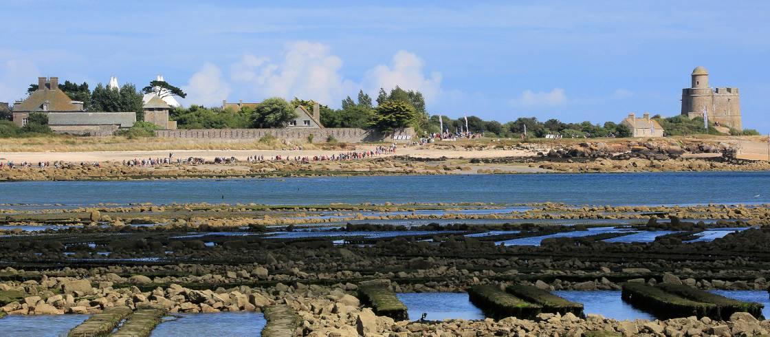 Traversées Tahitou en Normandie : un festival au rythme des
