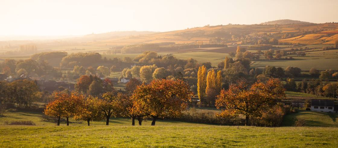 Colores de otoño en la Borgoña rural, en Francia.