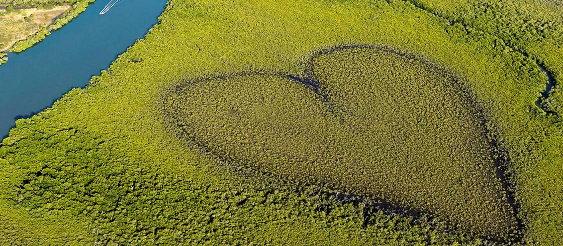 New Caledonia - Pacific heart