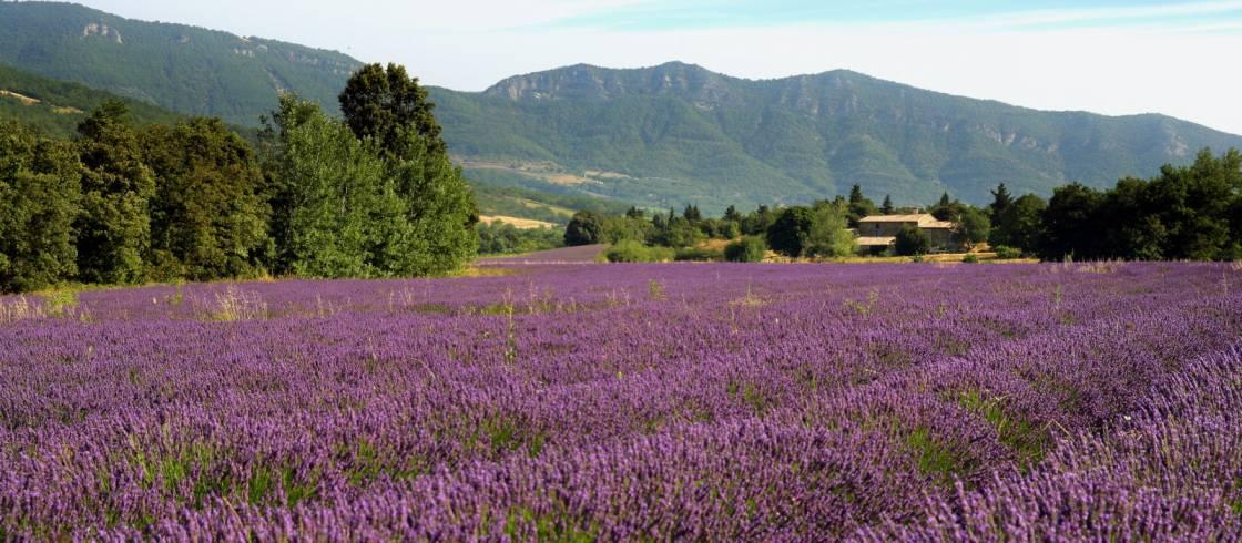 Provence-Alpes-Côte d\'Azur