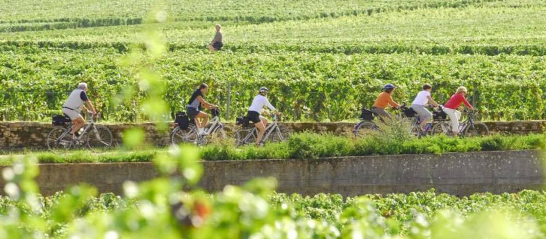 image__header__burgundys-world-renowned-wines__la-bourgogne-a-velo-credit-alain-doire-bourgogne-tourisme-0jpg