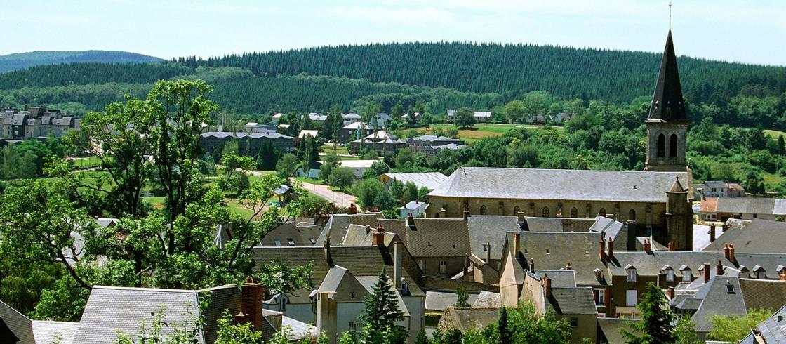 Pueblos encantadores entre los viñedos de Borgoña.