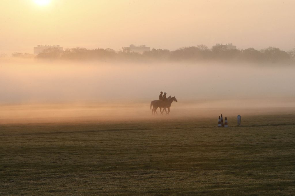 Domaine de Chantilly and horse riding
