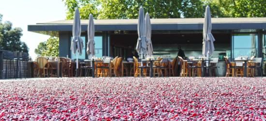 The Best Of Bordeaux 5 Restaurants In The Heart Of Vineyards